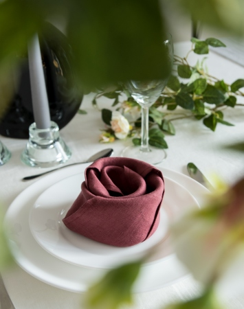 Set of marsala washed linen napkins